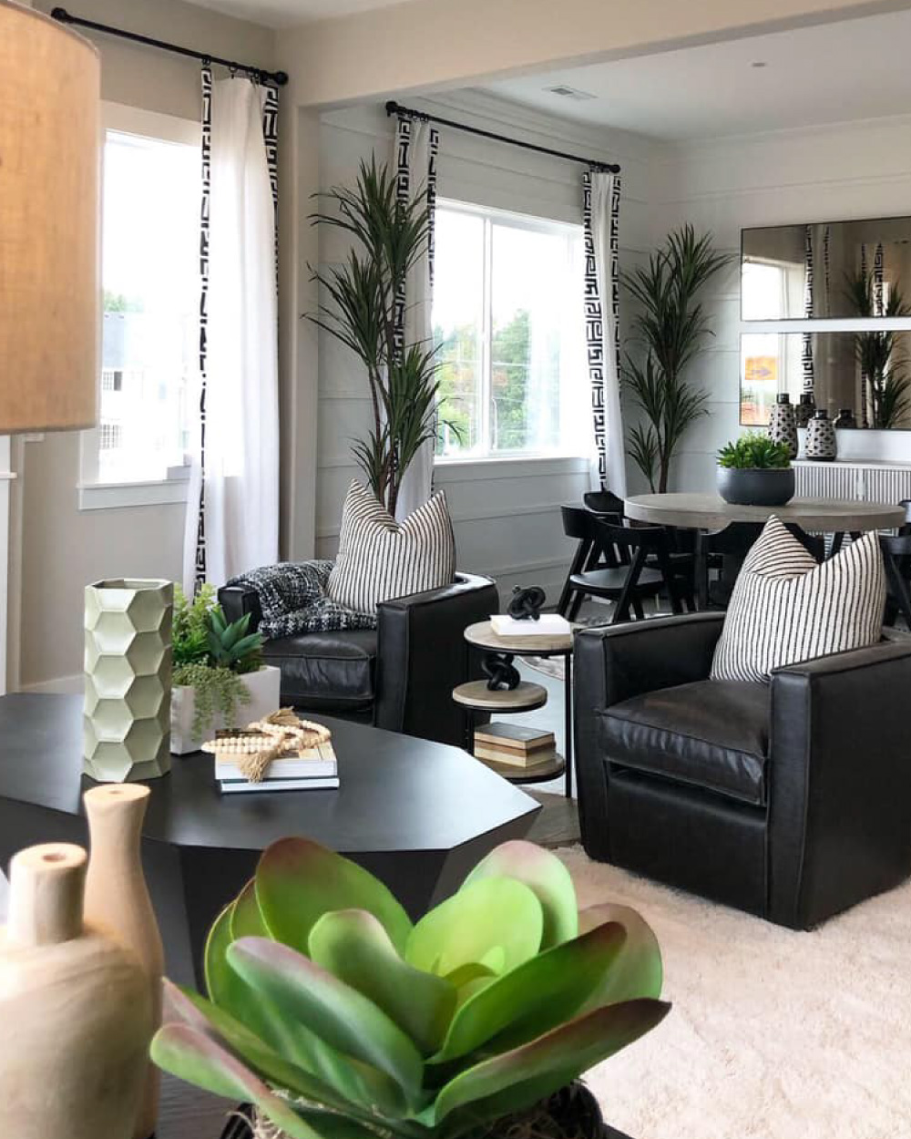 Family room with a variety of plants