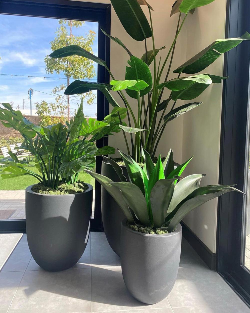 Interior office silk plants