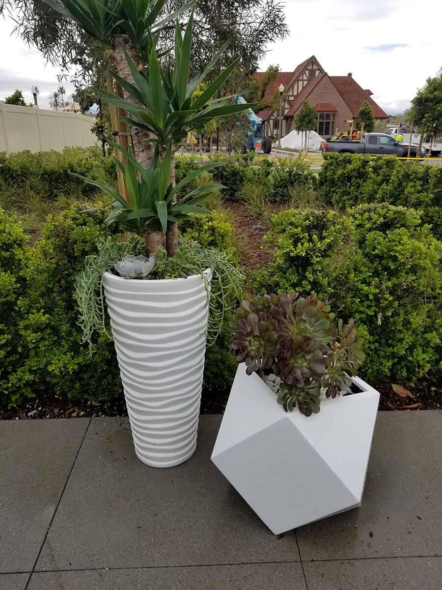 Exterior Potted Plants