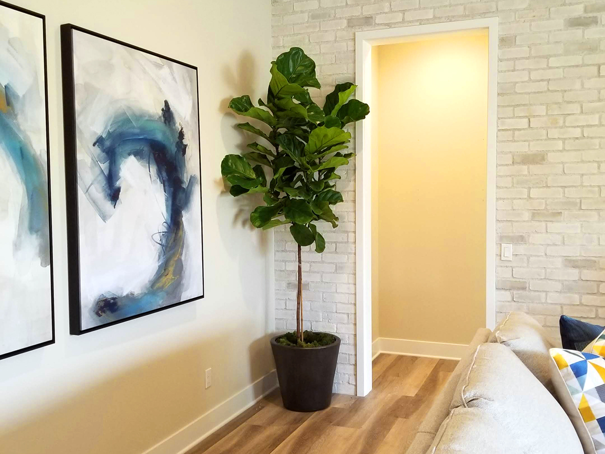 Interior plants in Southern California new home